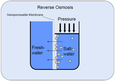 osmosis coursework salt solution Research osmosis is the diffusion of water across a partially permeable membrane from a dilute solution to one of a higher concentration if a solution has a low concentration then the amount of (in the case of my investigation) sugar, the solute, will be low and the solution will be weak.